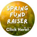 Copy of Spring Fundraiser Infographic (1