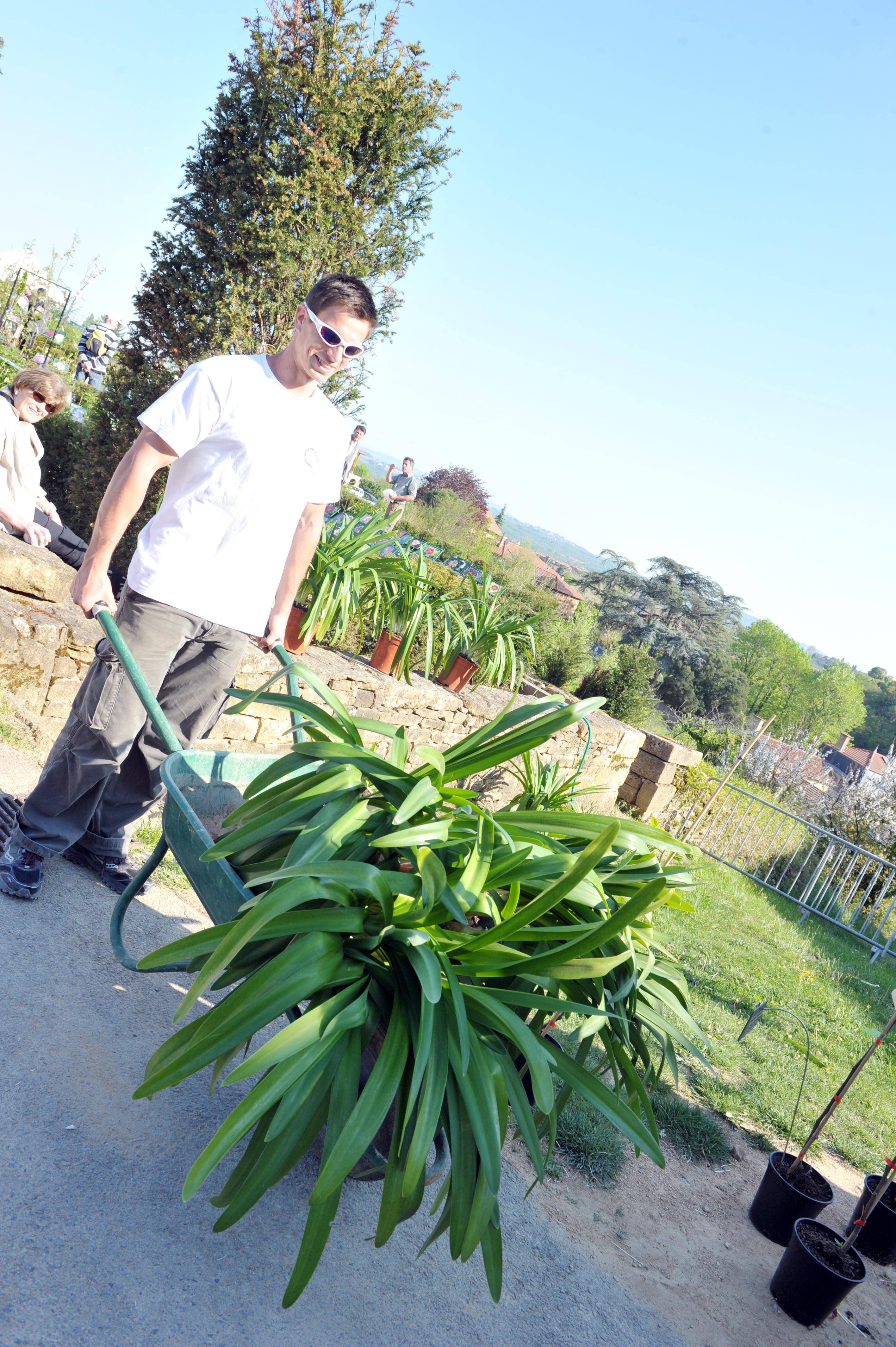 Journées des plantes la Garde