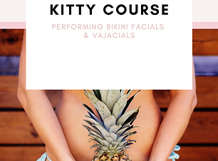 Vajacial Course Cover.png