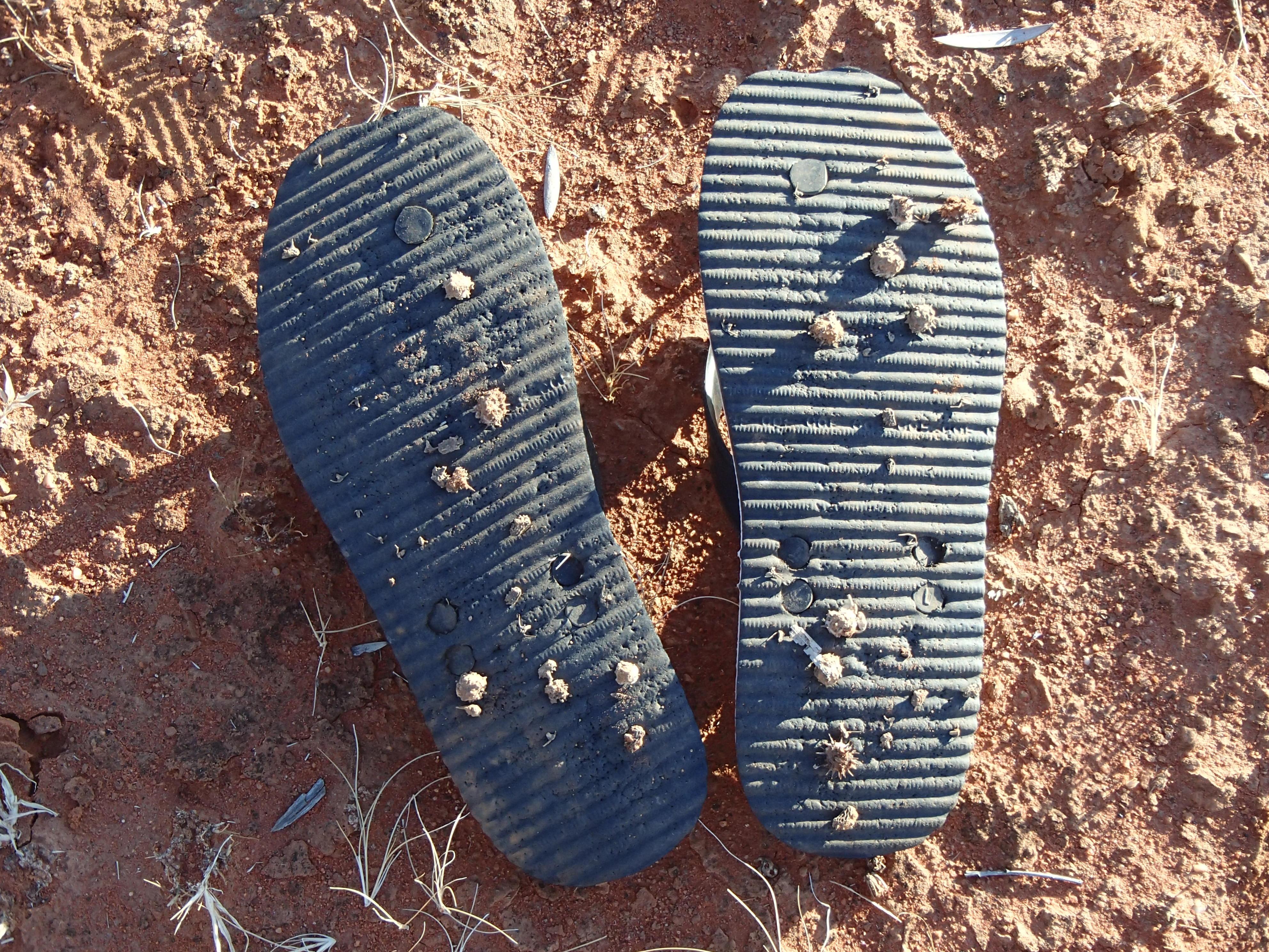 desert hike 178