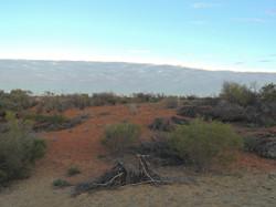 desert hike 042
