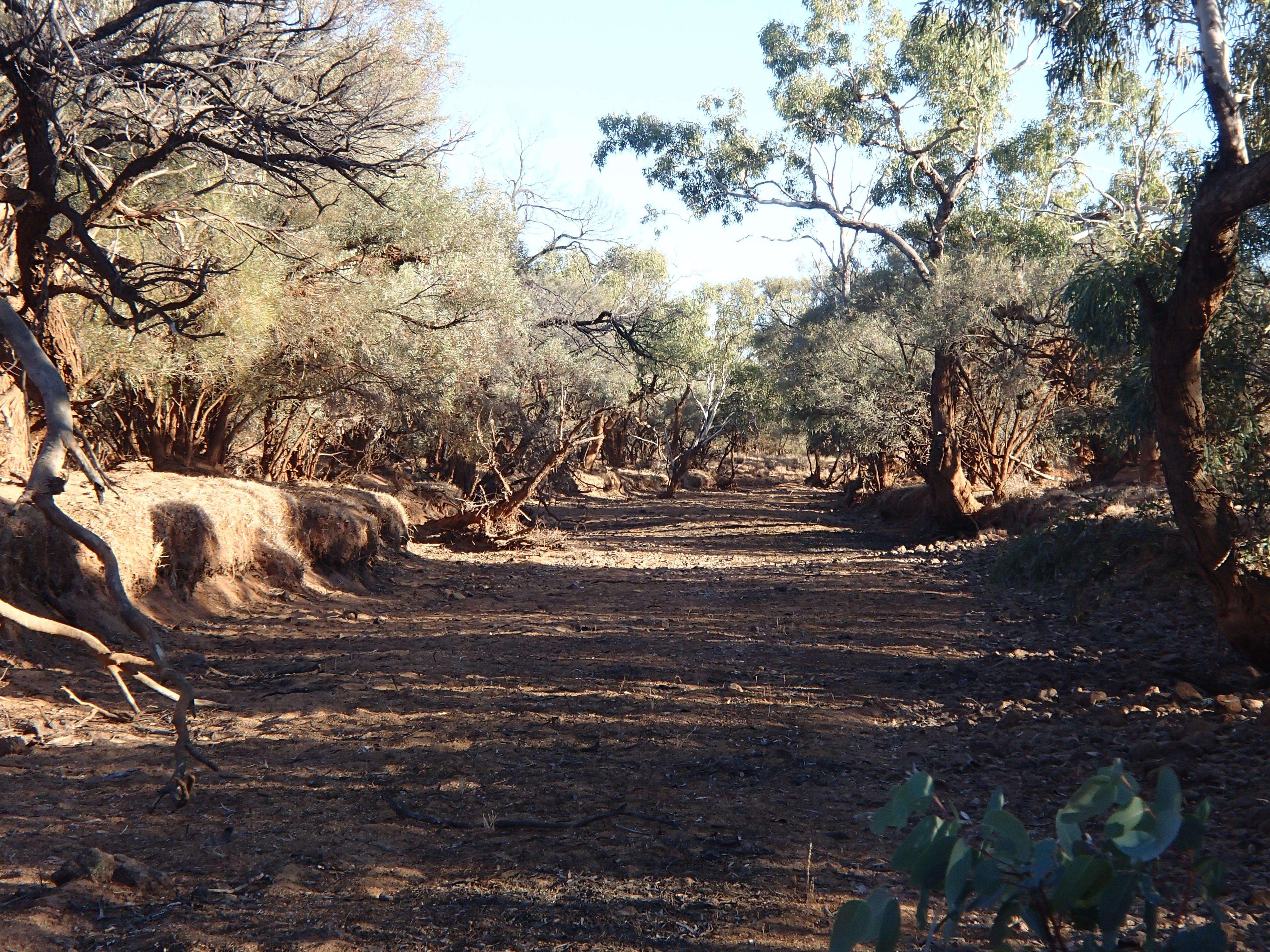 desert hike 252