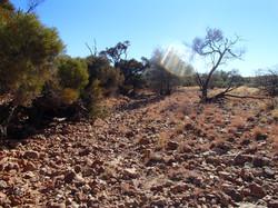 desert hike 273