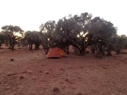 desert hike 201