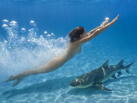 """""""Mama, ich bin heute nackt mit Haien geschwommen!"""""""