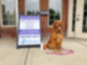 Sterling Heights Veterinary Compounding