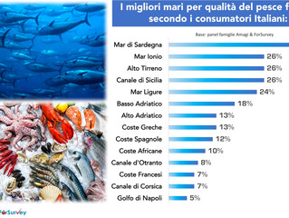 Pesce fresco: suggestioni, immaginario e qualità percepita