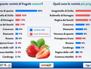 """Tempo di fragole: Cosa si intende per """"consumatore sempre più razionale""""? Quanto pesa inve"""