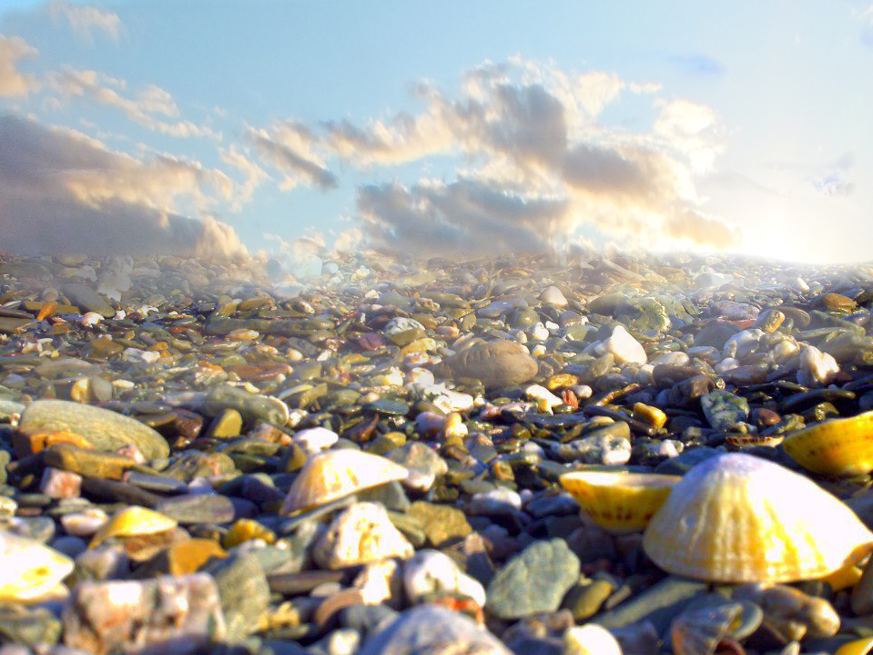 seashells and sky_01.jpg