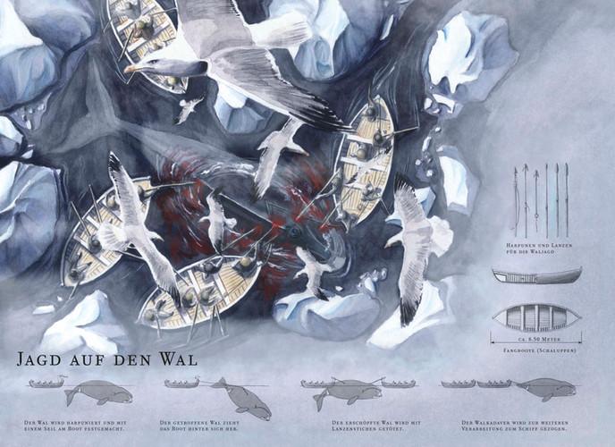 Jagd auf den Wal