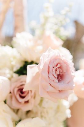 Julie_Jim_Wedding_-244.jpg