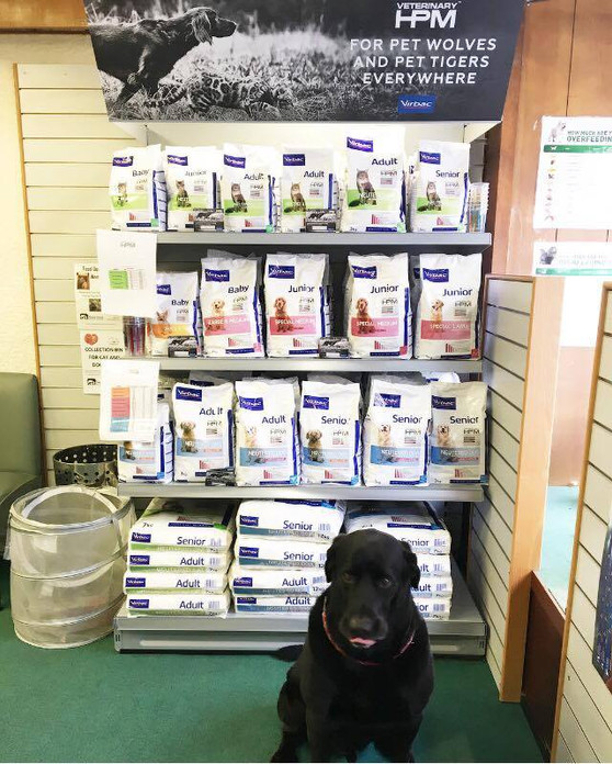 Did you know we sell dog and cat food?