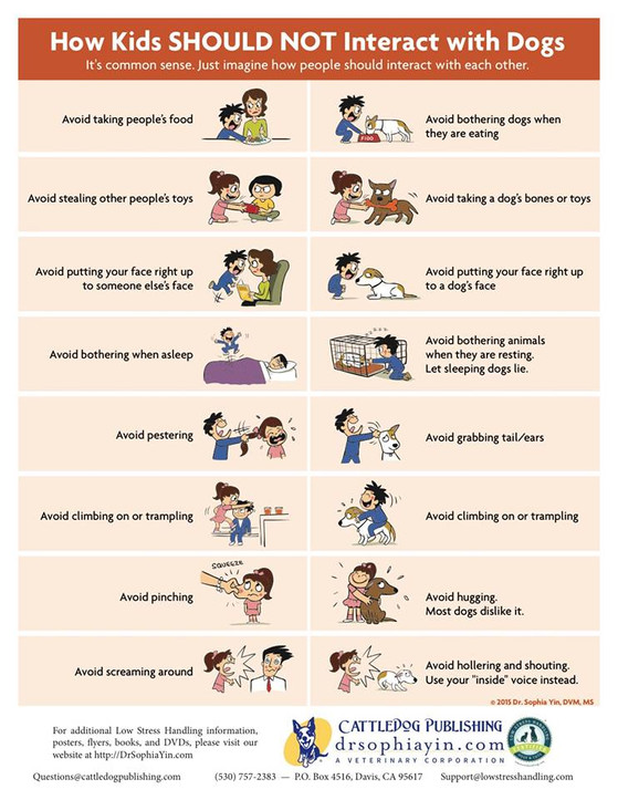 Children's interactions with animals