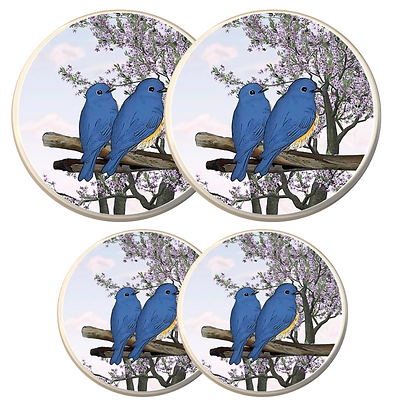 Electric Stove Burner Covers - Blue Birds