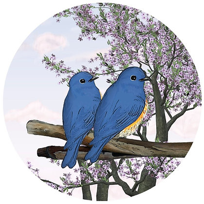 Glass Door Decals - Blue Birds