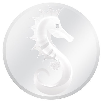 Glass Door Decals - White and Clear Seahorse