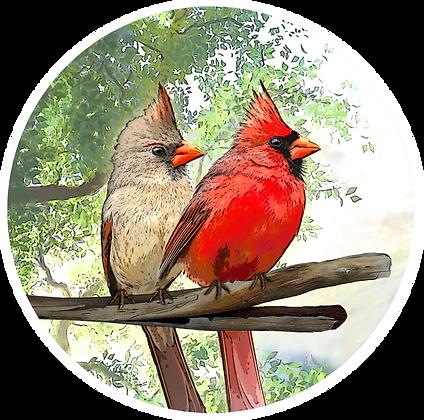 Screen Door Magnets - Cardinals