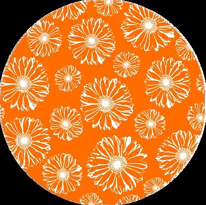 Screen Door Magnets - Orange Daisies