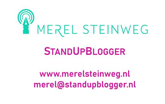 StandUpBlogger stil