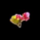 Fleur-SansPixels-Album.png