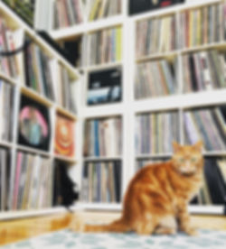 cat records.jpg