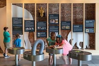 The Elephant Discovery Center