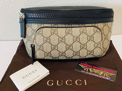 Brand New Gucci Bumbag