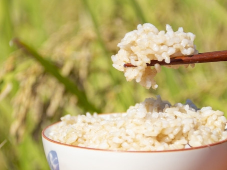 【+ Happiness】#9 玄米を美味しく食べられるのは、炊飯器?ル・クルーゼ鍋?STAUB鍋?土鍋?そこから得た深〜い気づき
