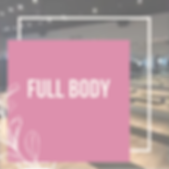 fullbodygraphic.PNG