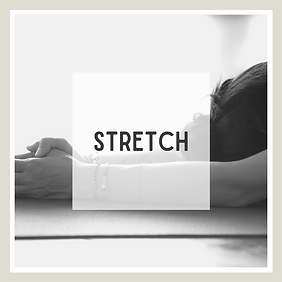 stretchcover.png