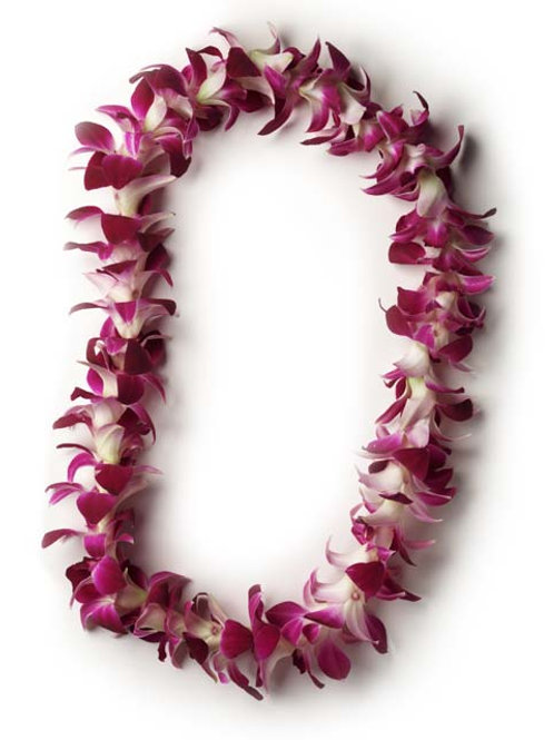 May Day Purple Orchid Lei