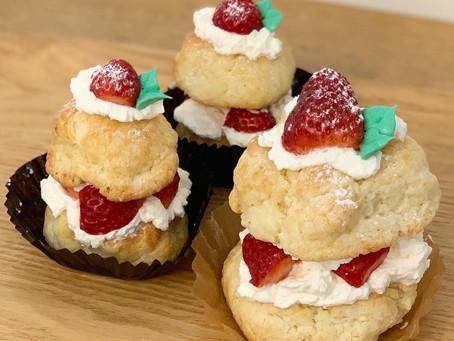 人気の限定お菓子と今週のキッチンカー情報