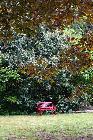L'automne et ses couleurs rouges comme le banc qui vous attend