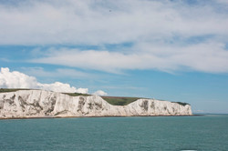 White Cliffs of Dover 6370