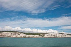 White Cliffs of Dover 6369