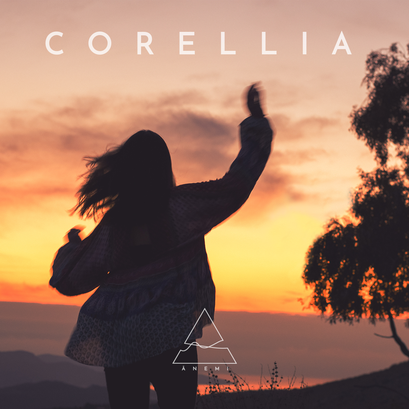 Corellia Artwork