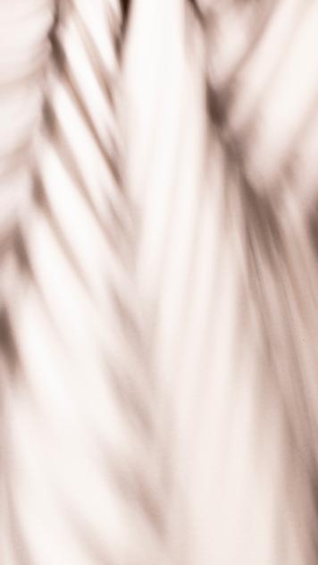 sombra 2 rica arepa.png