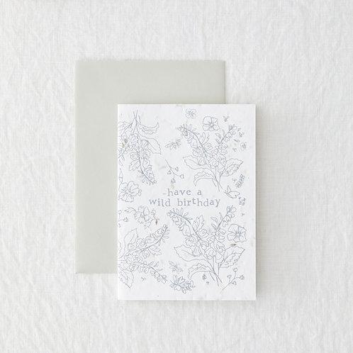 Wild Birthday - Seeded Card