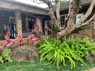 Courtyard-Shops-Kilauea.jpg