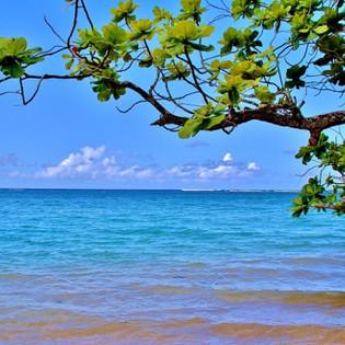 Aniani -Beach -Kauai.jpg