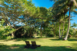 Chaise Lounges in tropical gardens