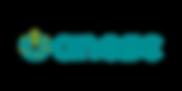 anese-logo-icon.png