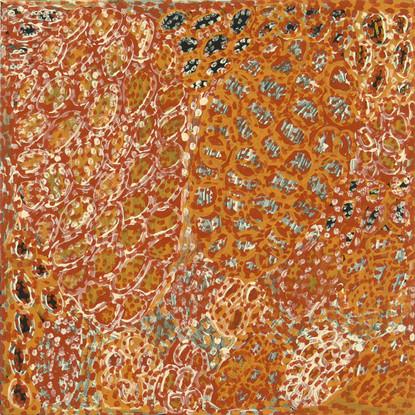 LOK 374-27 2007 Natural Ochres & binder on canvas 60x60cm