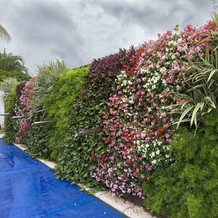 hydroplantas-jardim-vertical10.jpg