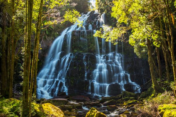 Nelson Falls in Tasmania