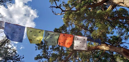 Colorful flags from India or the Himalay