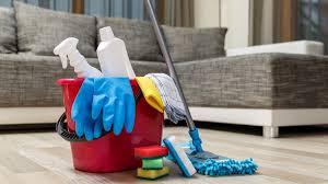 Пылевые клещи как причина развития аллергических реакций: что нужно сделать для того, чтобы от них избавиться