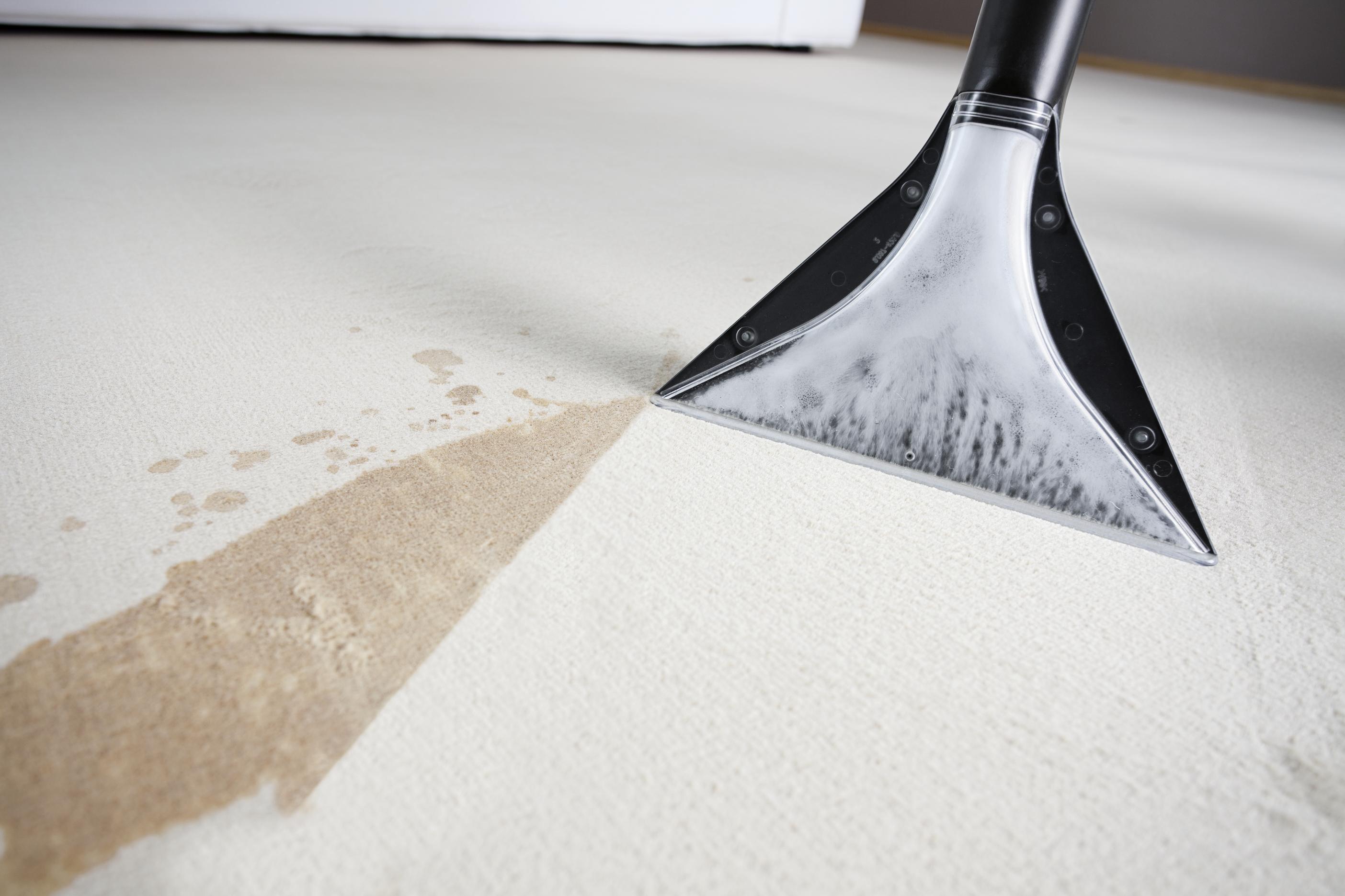 Химчистка ковров на дому в Иваново