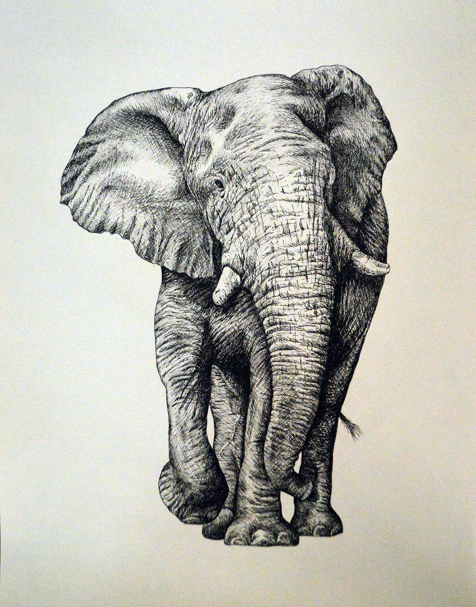 elephantcrosshatch