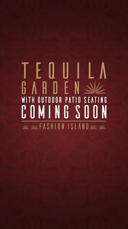 Tequila Garden Coming Soon.mp4